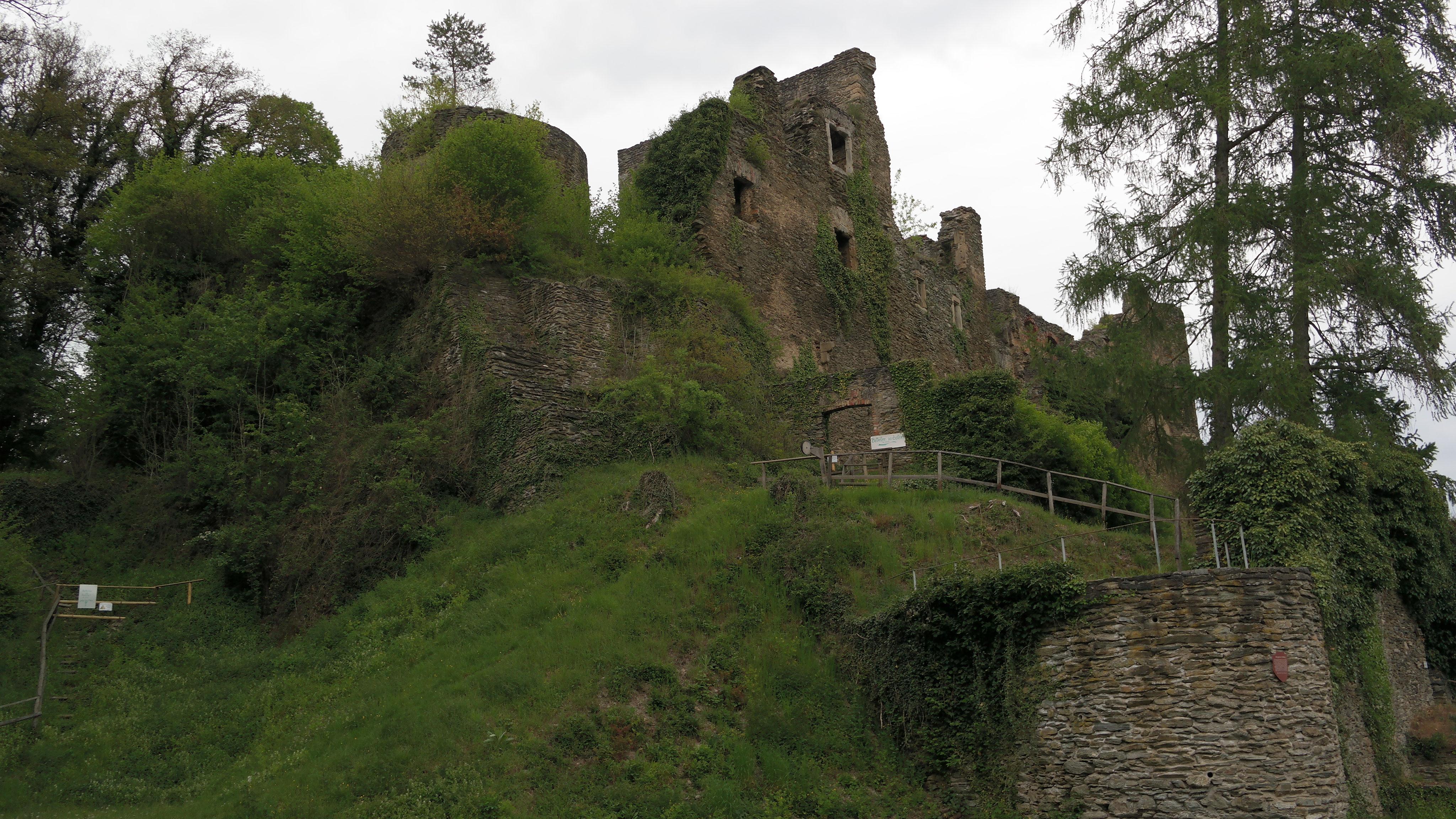 Burgruine - Dalberg (Landkreis Bad Kreuznach) - Burgen