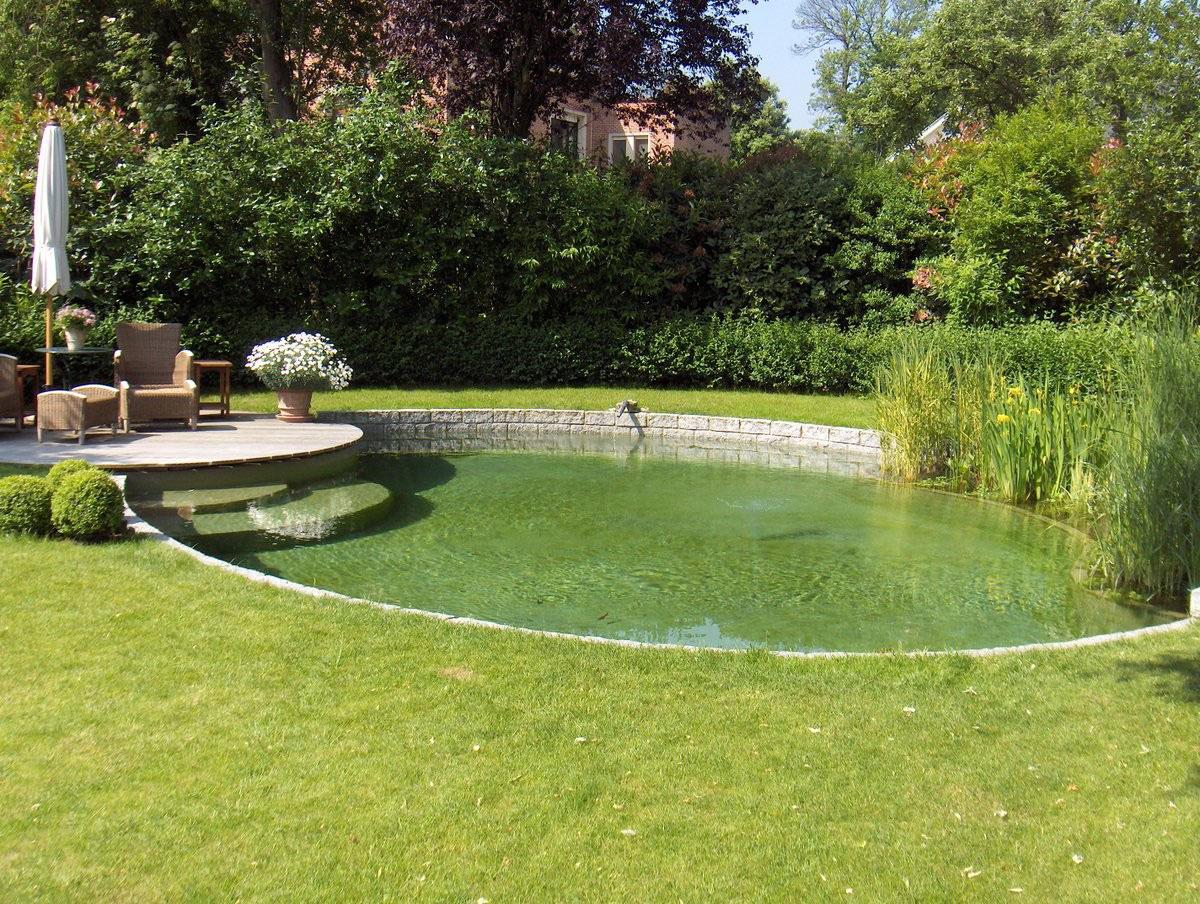 Pi ces d 39 eau naturelles et jardins aquatiques water garden for Piscine de jardin belgique