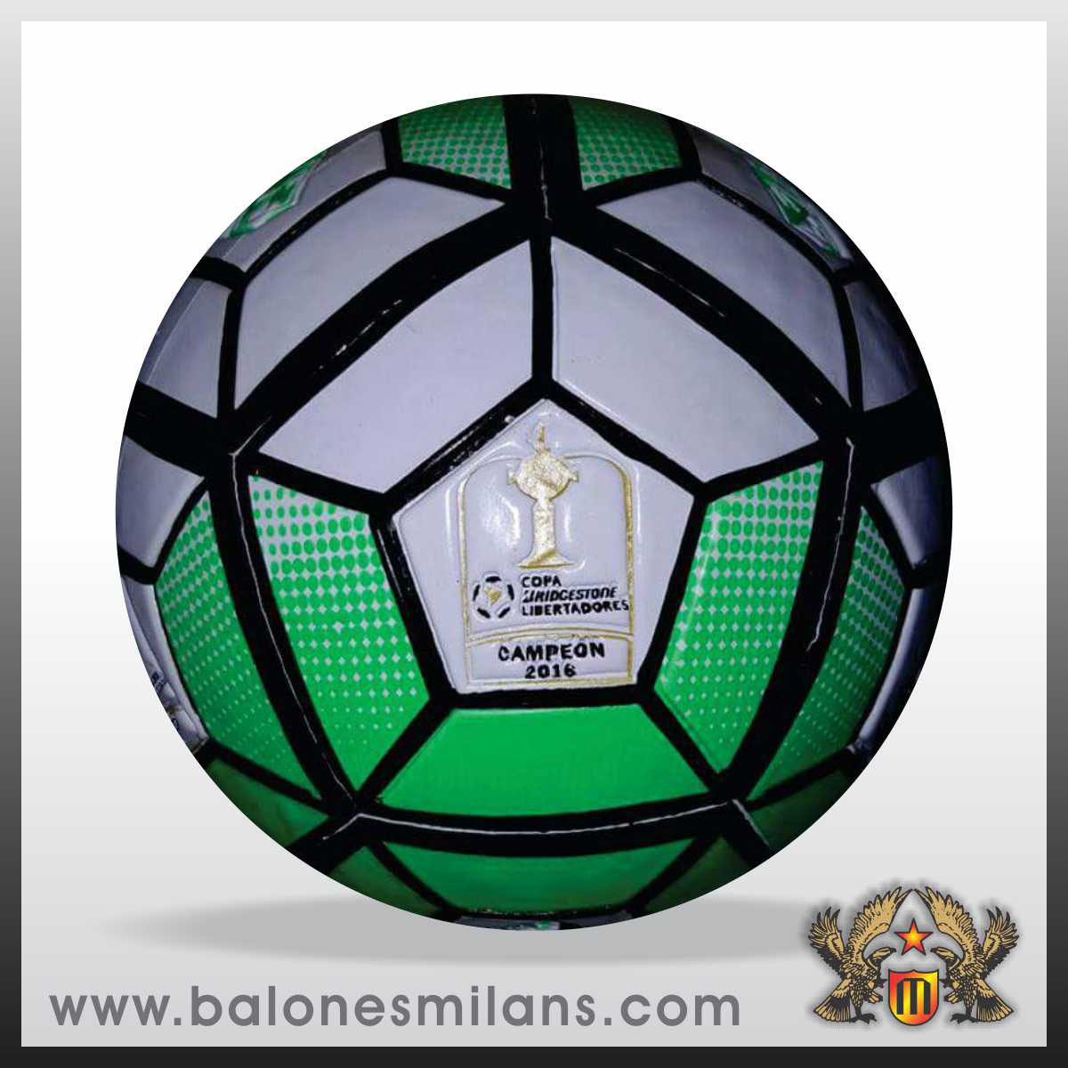 Profesional - Fabrica de Balones Bucaramanga Milans 912fe0943d494