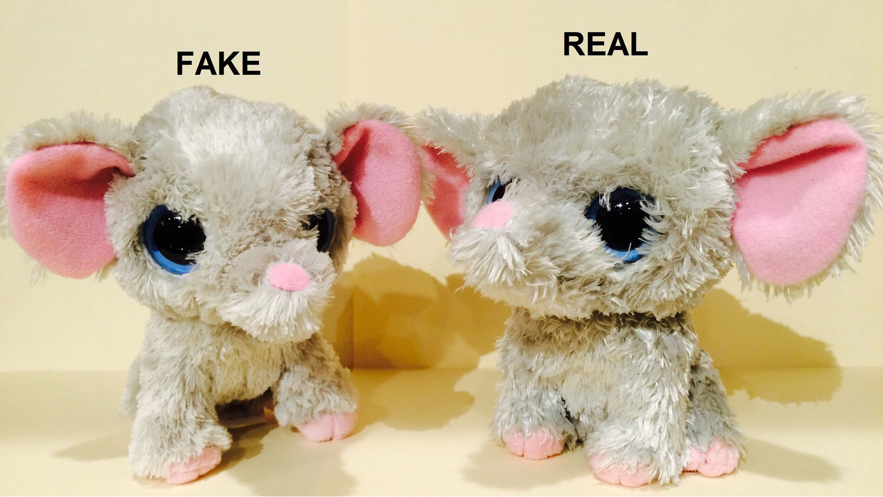 Follow-up fake 1st UK Peanut! - Beanie Boo collection website! c04dafece92