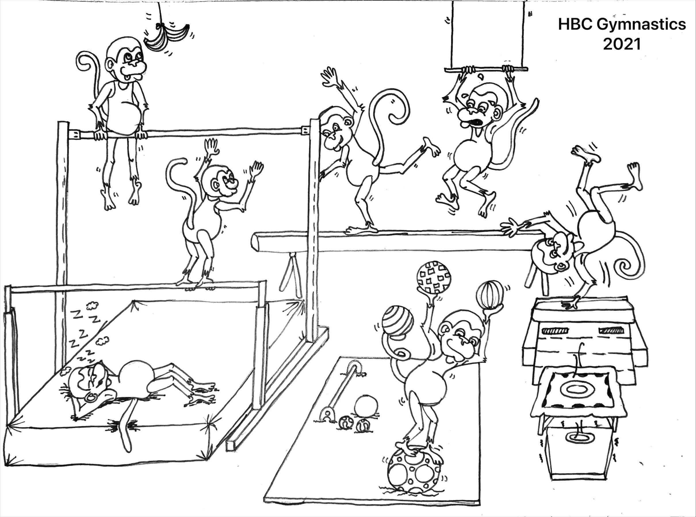 Nieuws De Website Van Hbc Gymnastics Nl Voor Turnen En Gymnastiek In Heemstede En Bennebroek