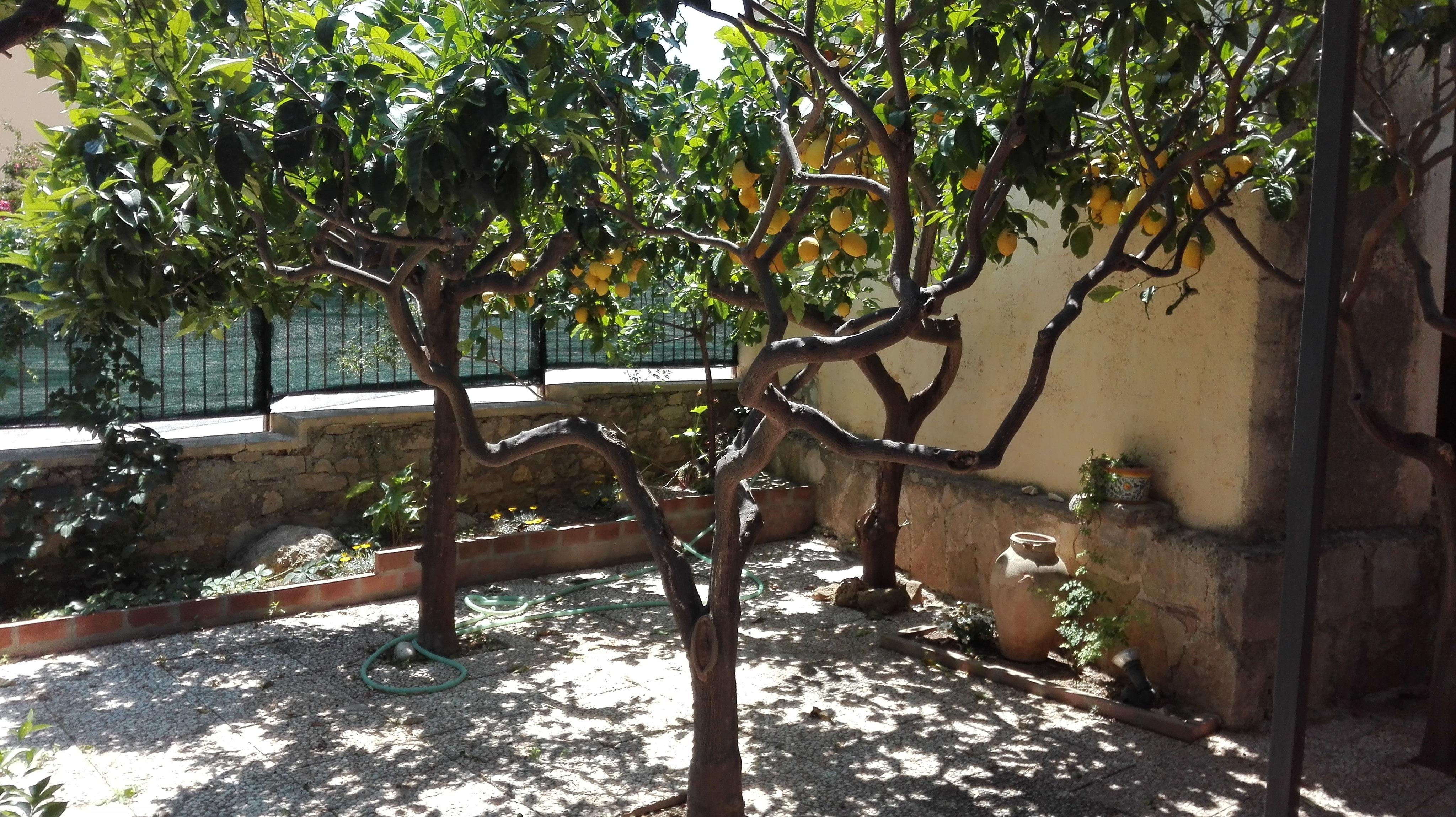 Sant 39 andrea terrazza v mare benvenuti su housebagli for Affitti temporanei milano