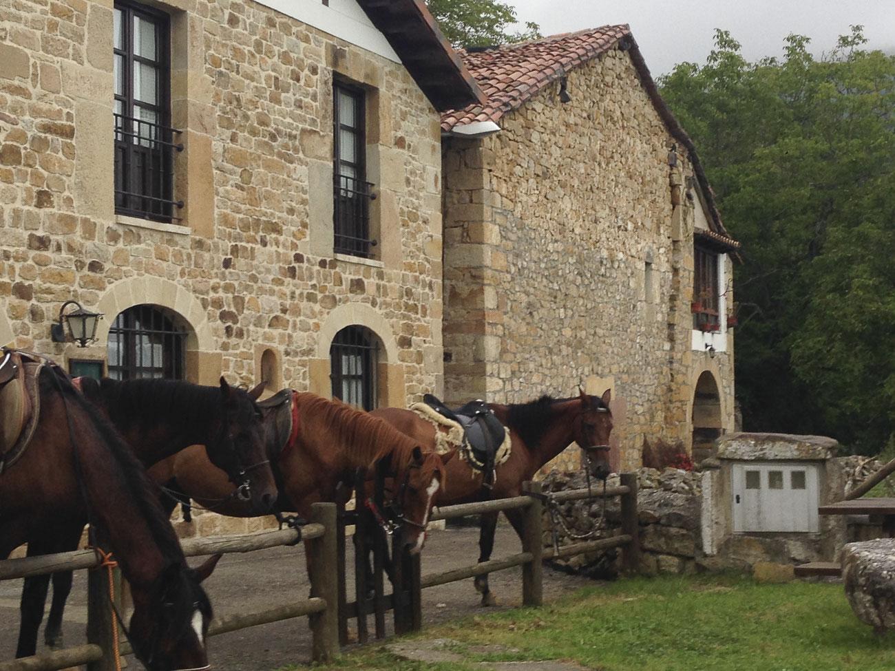 Rutas Y Paseos A Caballo Centro Hípico La Espina Cantabria