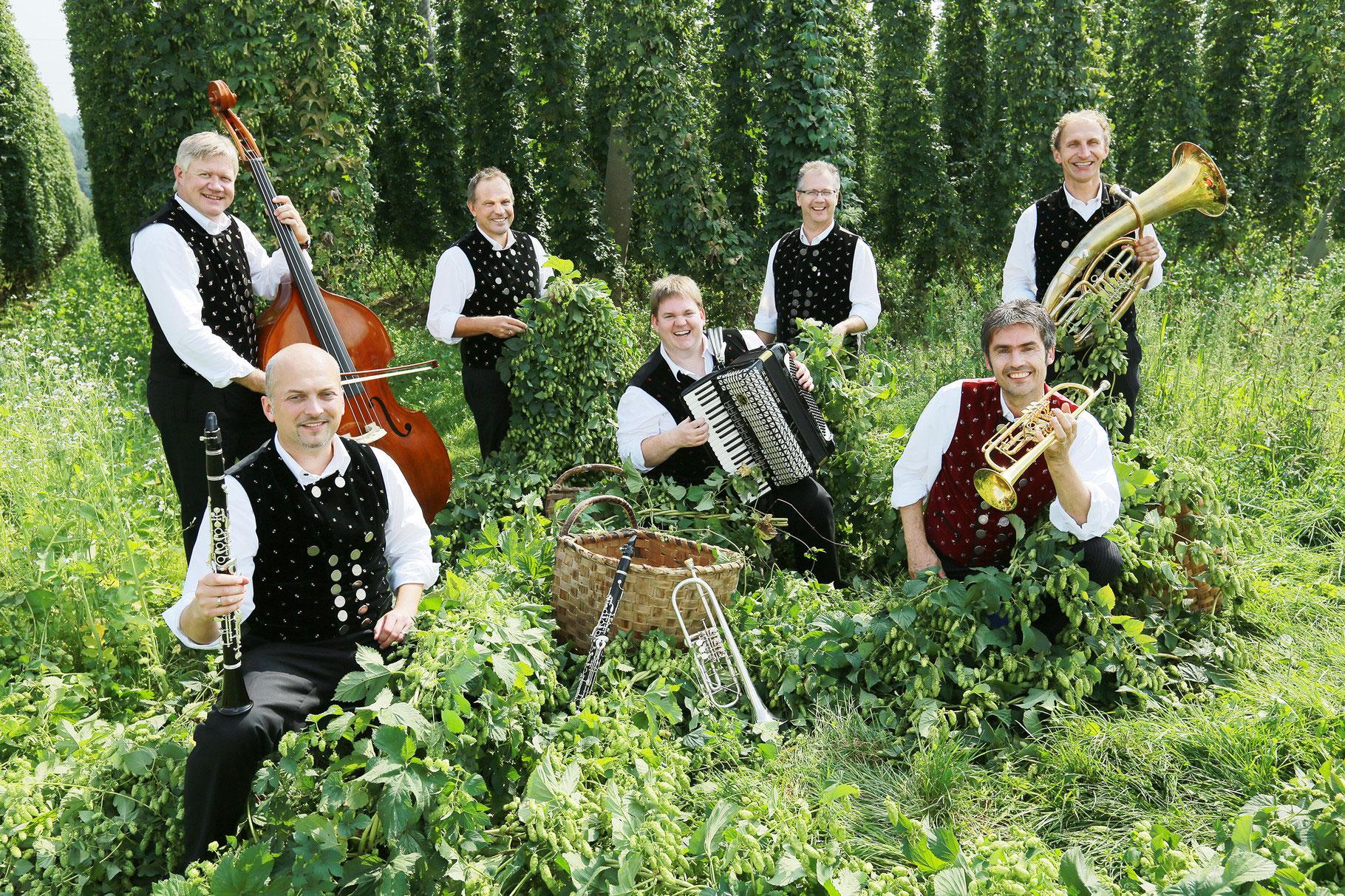 Dellnhauser Musikanten