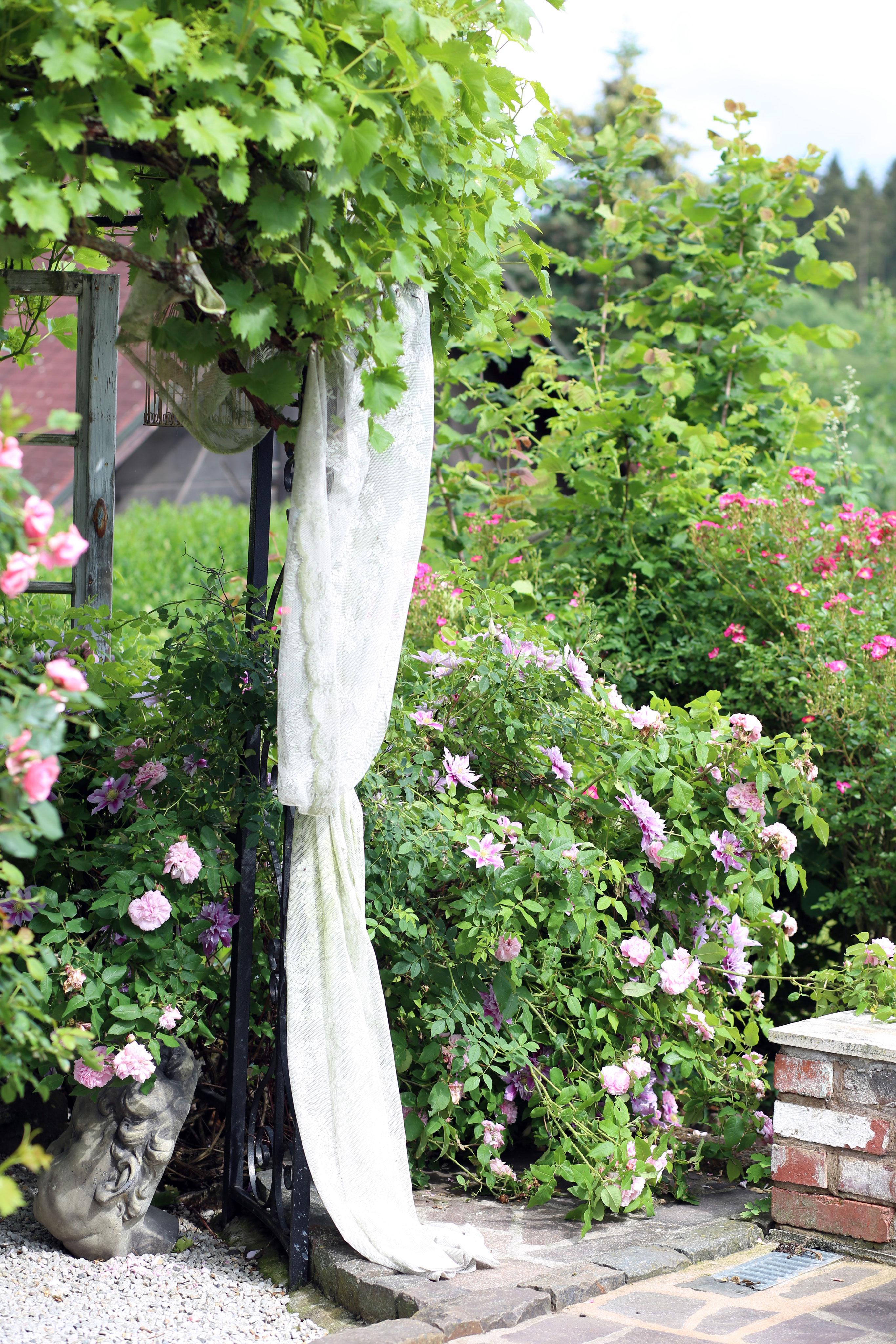 Mein Garten Belinda Anton