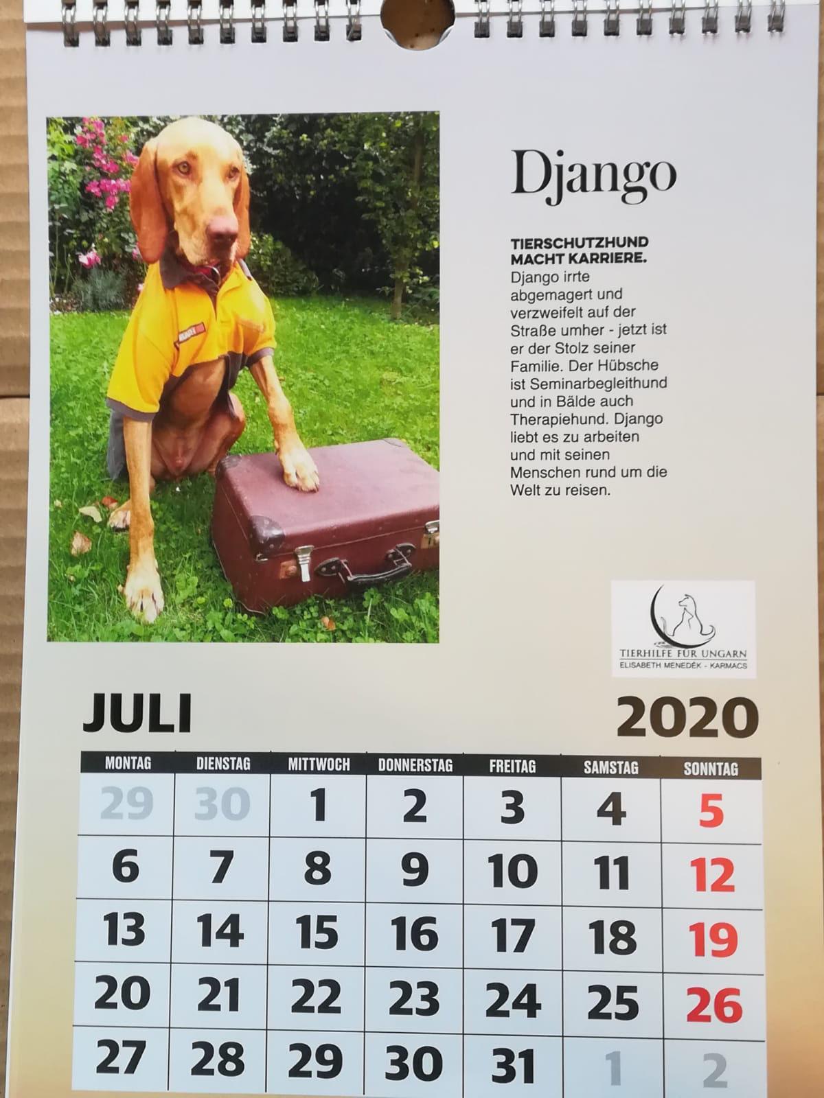 (c) Ungarn-tierhilfe.at