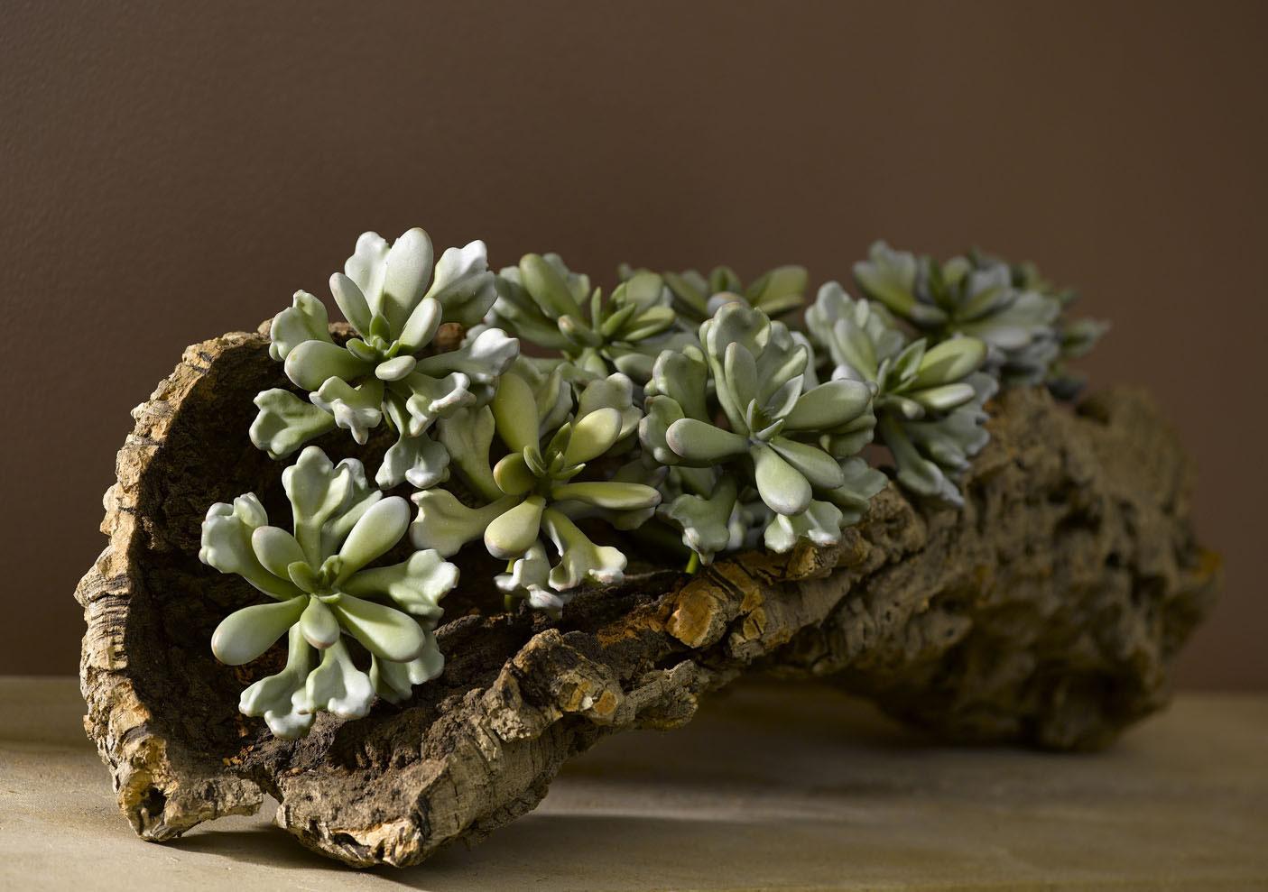 Stilvolle dekoration als individuelle erg nzung und pers nliche note botanic concepts - Stilvolle dekoration ...