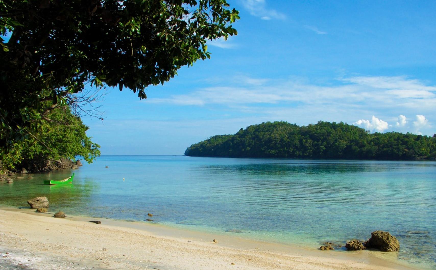 Richelieu Rock Thailand Top 10 Dive site Womens T-Shirt Black