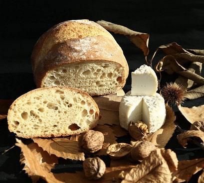 Le pain cuit au four à bois mis en scène avec un bon fromage de chèvre fermier de La ferme de La Pérotonnerie de Rom dans les Deux-Sèvres