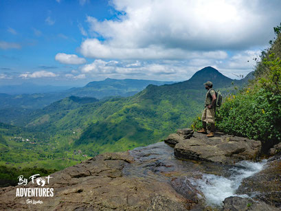 Knuckles Mountains, Sri Lanka, Wildlife, Conservation, Elephants, Safari, Leopard, Adventure, Lodge, Camp, Hike, Trekking, Hiking, Travelsrilanka, holiday, Elephant, Asian Elephant, Nationalpark, Guiding, Wildlife, Waterfall, Mountains
