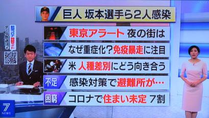 野球居酒屋 メディア情報 NHK ニュース7
