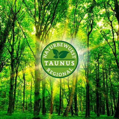 Das malerische Taunus-Städtchen Oberursel