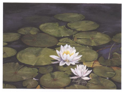 """Lily Pads"""