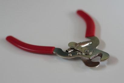 Krallen schneiden beim Hund mit dem richtigen Werkzeug