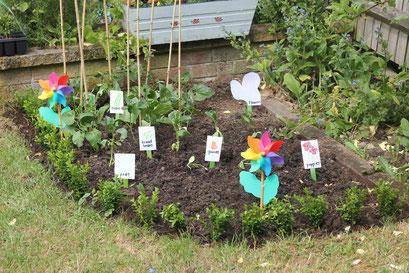 a good example of a kids garden