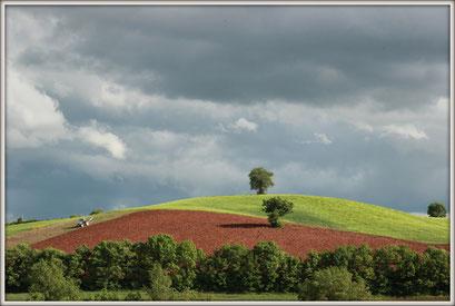 Terre du Rougier (photo C. Le Bigot)
