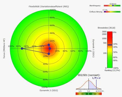 Rang-Diagram Kurzzeit HRV  schlechter Parasympathikus