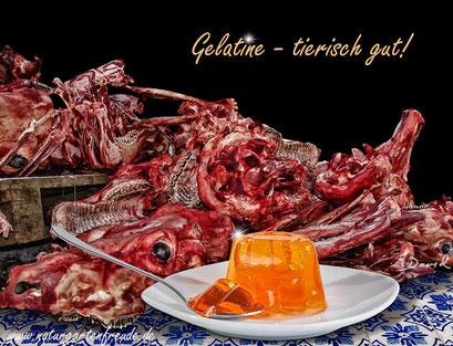 Fotomontage Gelatine Knochen photomontage bones gelatin