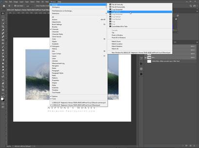Photoshop, zwei Bilder nebeneinander, SoftProof, Dr. Ralph Oehlmann, Oehlmann-Photography