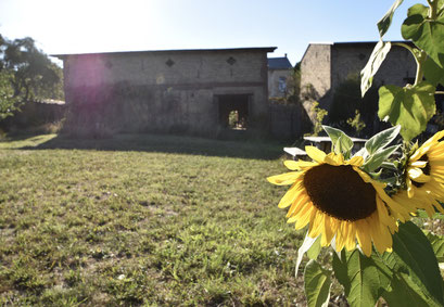 Farm Brandenburg