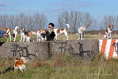 Ein Gruppenfoto mit uns allen ist gar nicht so einfach: Aaron, Ayko, Ayla, Cassy, Kabou, Jette, Janne & Baila (unten)