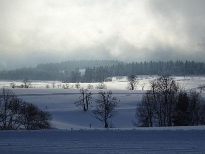 Winterlandschaft mit verschneiten Wiesen, Bäumen und tief hängenden Wolken
