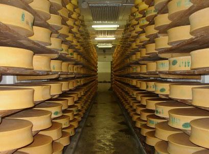 Le Beaufort : fromage du Beaufortain