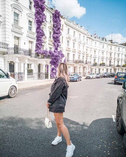 Zu sehen ist eine mögliche Bildidee mit Lavendel in Notting Hill.
