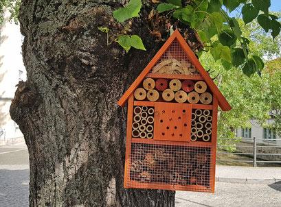 Insektenhotel an einem Baum