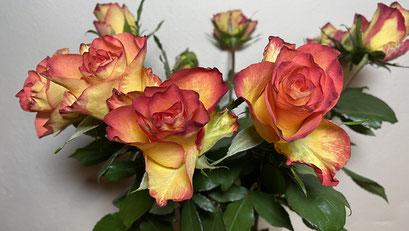 Rosen und ein Märchen zum Valentinstag von Helga Graef