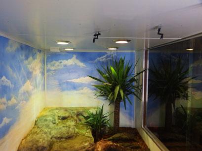 Tejugehege mit Beregnung und 460W UV-Beleuchtung