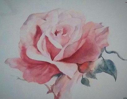 Rose à l'aquarelle (interprétation d'une oeuvre de LA FEE)