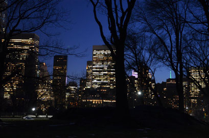 Night walk through Central Park. photo: Reinhold Ponesch ©