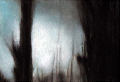 Wald, Kreide auf Papier, 2006, 100 x 70 cm