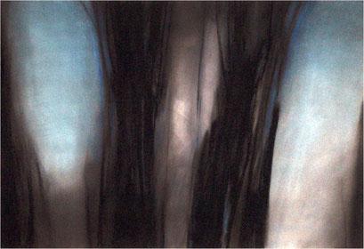 Wald 2, Kreide auf Papier, 2006, 100 x 70 cm