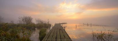 Germany / Neumünster Einfeld / Einfelder Lake / Misty November Morning 2016