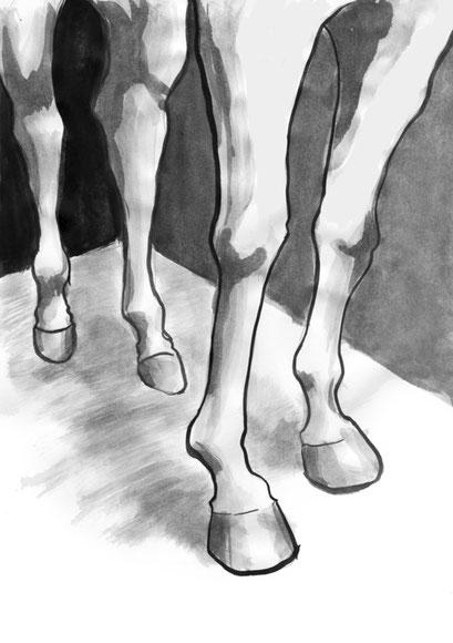 Das Rennen- Darabant