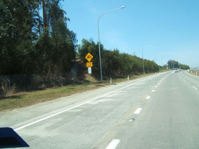 links ein radweg