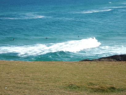 sawtell surfers