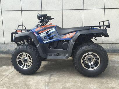 Monster 300cc - vitacci