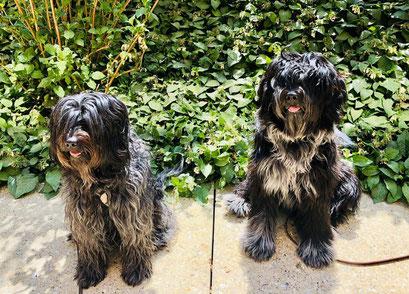 Theo (Amaru) mit Coopers Schwester Mali