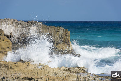 Korallenklippen im Osten von Cozumel
