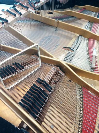 regolazione smorzatori di pianoforte a coda