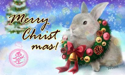 クリスマスカード2017