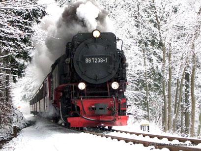 Die Harzquerbahn kurz vor der Brücke im Elendstal