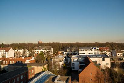 Sprechzimmer Ausblick über den Stadtpark