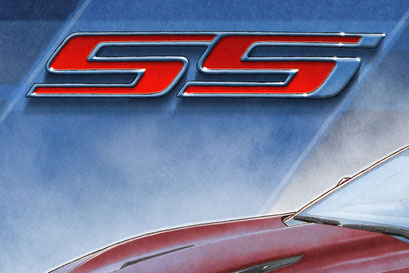 The SS background emblem and decorative graphics add authenticity to the drawn portrait