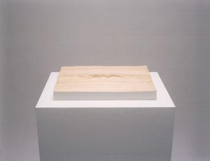 フタバ画廊     2003