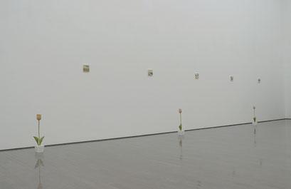 群馬の美術 2017      群馬県立近代美術館