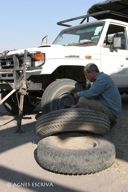Crevaison, Botswana 2007